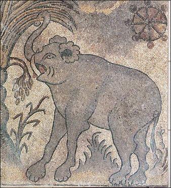 Elephants And Humans History War Elephants Royalty And Polo
