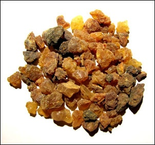 FRANKINCENSE TRAIL | Facts and Details