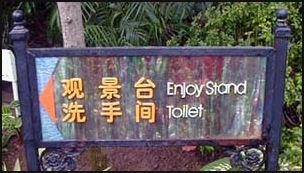 20080226-enjoystandtoilet.jpg