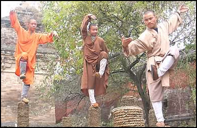 Kung fu in china shaolin temple and bruce lee style kung fu facts kung fu in china fandeluxe Choice Image
