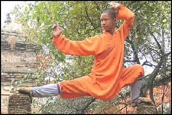 Kung fu in china shaolin temple and bruce lee style kung fu facts kung fu moves fandeluxe Choice Image
