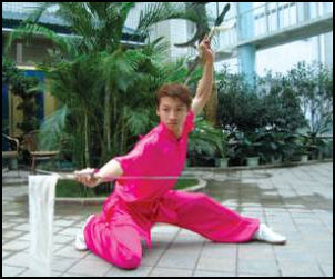 WUSHU, TAI CHI AND THE MARTIAL ARTS IN CHINA | Facts and Details