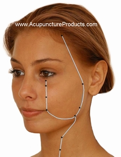 20080311-Accupuncture products stomach meridian points.jpg