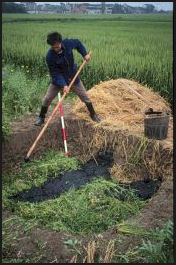 20080314-wet compostuing agroecology.jpg
