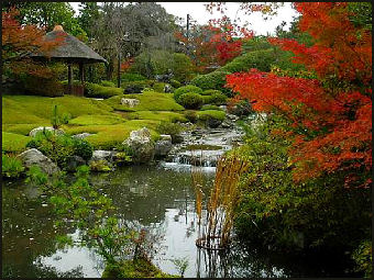 GARDENS AND BONSAI IN JAPAN HISTORY TYPES TRENDS MINIATURE