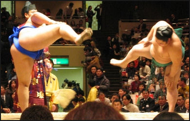 SUMO RULES AND BASICS: TOURNAMENTS, TECHNIQUES, RITUALS, FANS AND