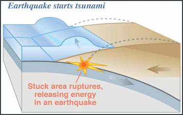 TSUNAMIS AND JAPAN: THEIR PHYSICS, POWER AND DYNAMICS   Facts and ...