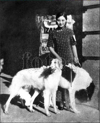 20111107-Wiki C Film Dog and beauty 1930s.jpg