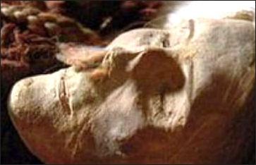 20111123-mummy07.jpg