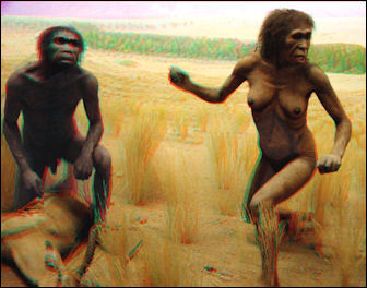 20120202-Australopithecus_couple.jpg
