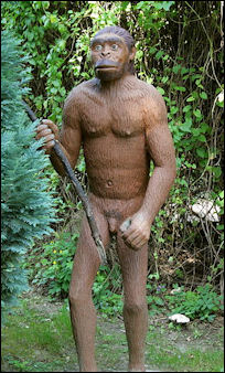 20120202-Sauriergarten_-_Homo_erectus_02_ies.jpg