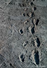 20120202-footprint.jpg