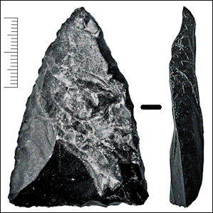 Neanderthals invented specialised bone tools - Filthy Monkey Men
