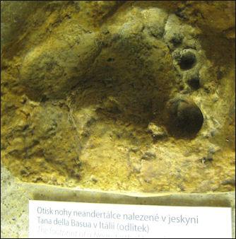 20120205-Neanderthal_Foot_Print.jpg