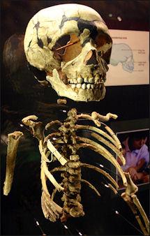 20120205-Neanderthal_child.jpg