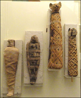 20120215-Animal_mummies Egypt_-_Royal_Ontario_Museum.jpg