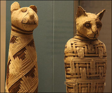 20120215-British_museum_Egypt_mummies_of_animals_.jpg