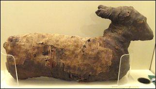 Real Egyptian Baby Mummies