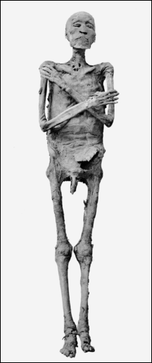 20120215-Ramses_IV_mummy.png