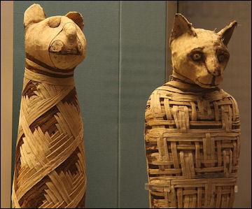 20120216-British_museum_Egypt_mummies_of_animals_.jpg
