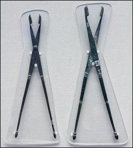 20120222-Health Bronze_forceps.jpg