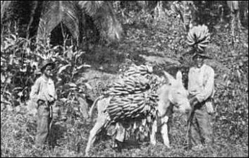 20120525-1894_banana_transport1_Jamaica.png