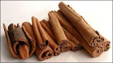 20120525-Cinnamon_Variaties_-_Robin.jpg