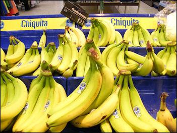 20120525-bananasChiquita_bananas.jpg