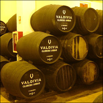 20120528-wine spain ValdiviaJerez55.jpg