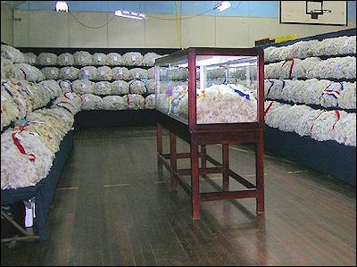 20120529-Wool_display.JPG