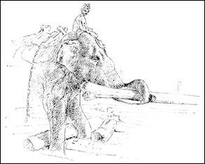 20120531-Elephant_lifting_teak_logs.jpg