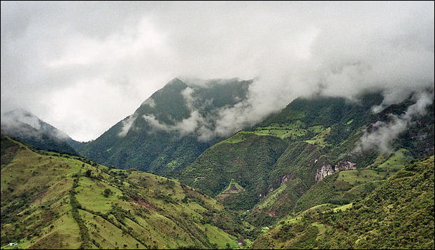 20120601-800px-Mindo-Cloud-Forest-05.jpg