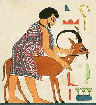Ancient Egyptian Food Facts And Details