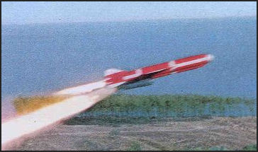20080310-china-criuse_missile1.jpg