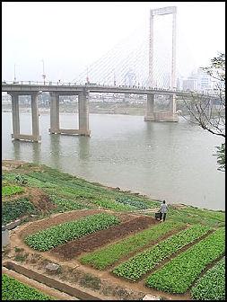 20080316-gv06-nanning-bridge.jpg