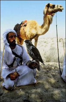 20120210-Bedouin.jpg