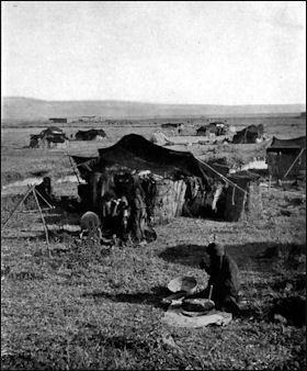 20120210-Bedouin_tents_1912.jpg