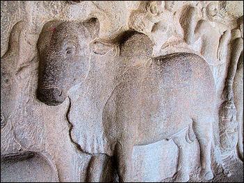 20120502-Cow_bas_relief_in_Mamallapuram.jpg