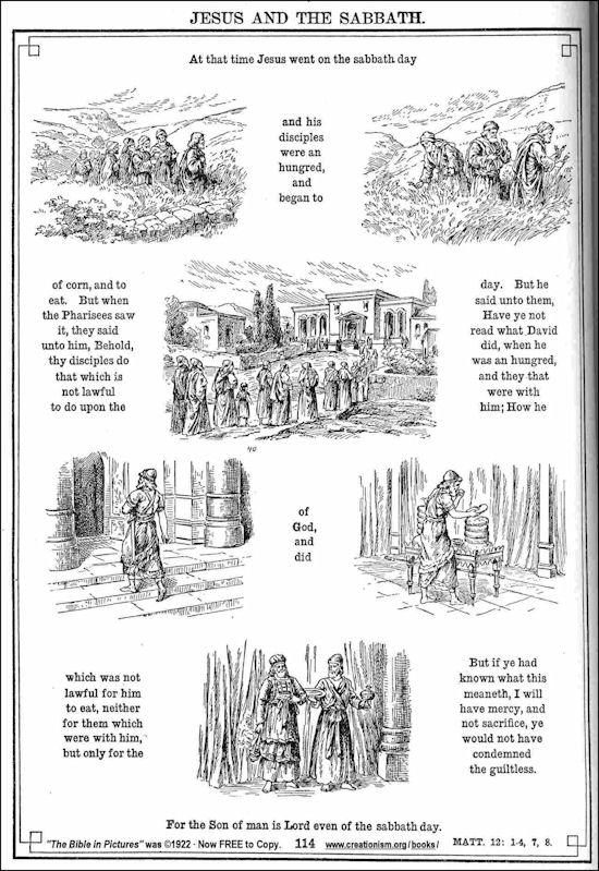 20120507-Bible40Mat12_01-08.jpg