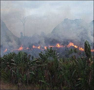 20120515-Manantenina_bushfire.jpg
