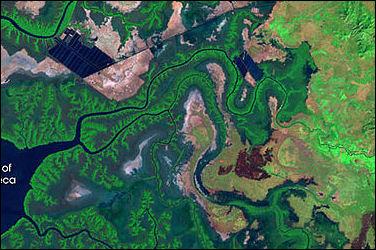 20120515-ShrimpFarming_Honduras_L7_1987-99.jpg