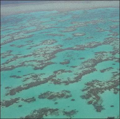 20120517-Great_Barrier_Reef_from_Helecopter.jpg