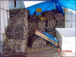 20120518-Shark_fins_confiscated_from_King_Diamond_II.jpg