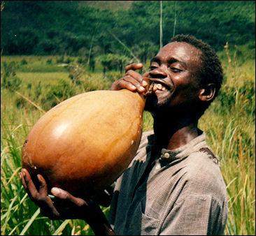 20120525-Refreshing_palm_wine.jpg