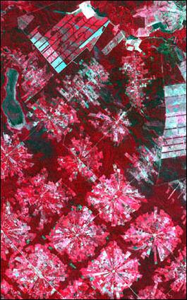 20120601-Bolivia_satellite_deforestation_1986_2001_.jpg
