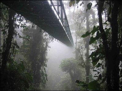 20120601-Costa_rica_santa_elena_skywalk.jpg